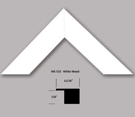 ms510-profile.jpg